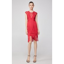Herve Leger Asymmetrical Fringe Bandage Dress