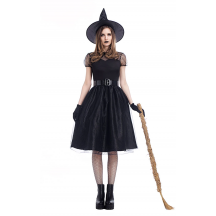 Witch Matching Adult Costume